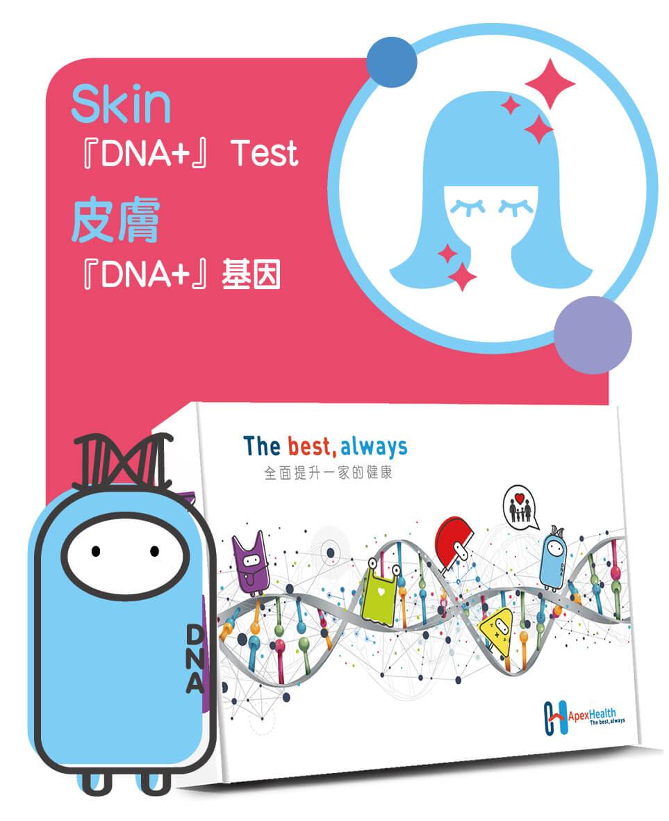 『DNA +』の皮膚基因測試