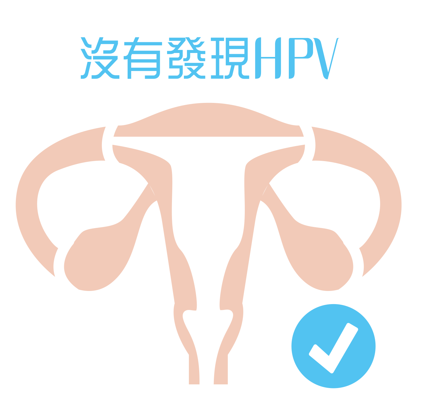 ApexHealth HPV DNA test Negative Results