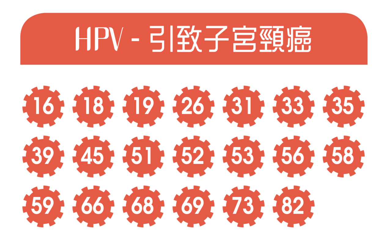 ApexHealth HPV DNA test high risk viruses