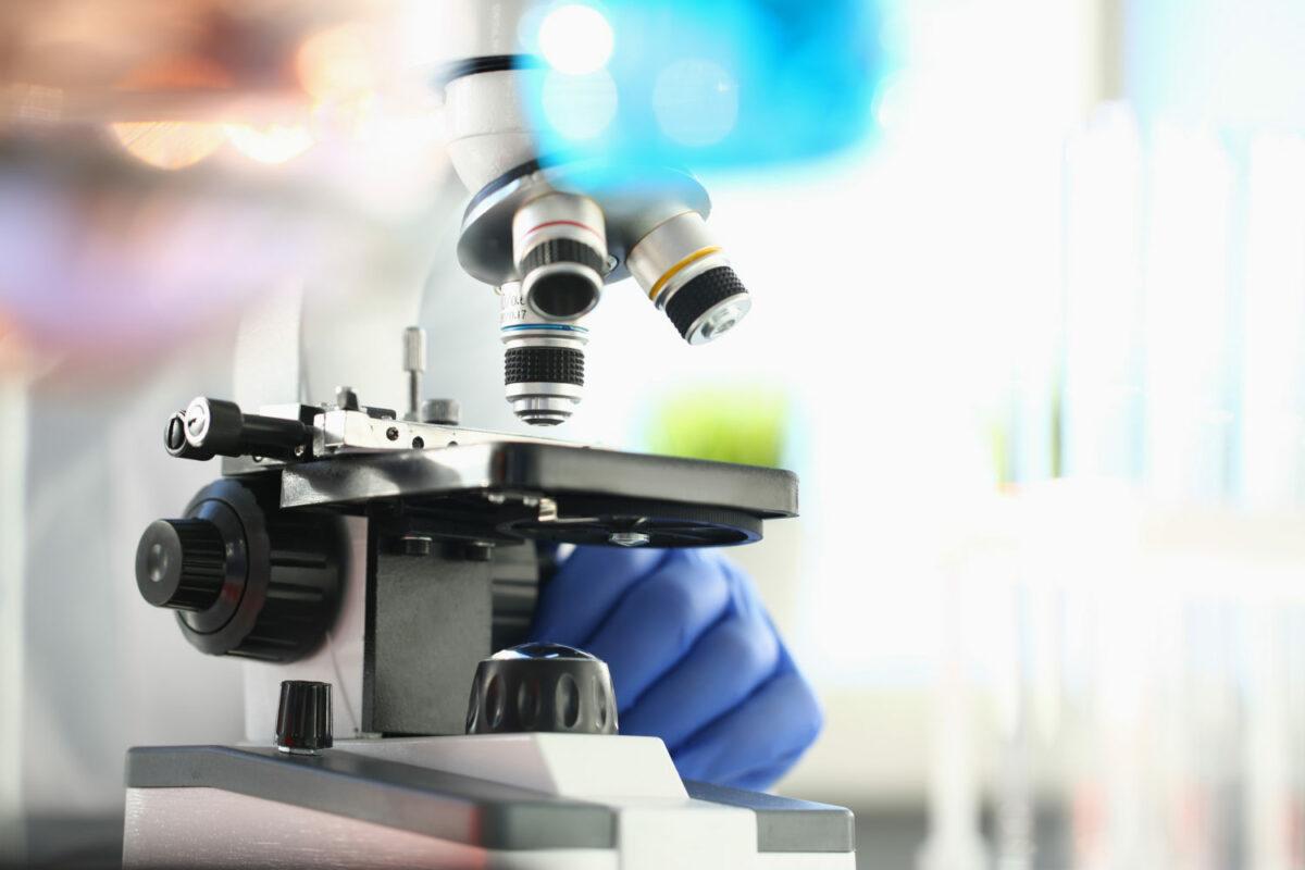 IgG 排除飲食法的臨床研究
