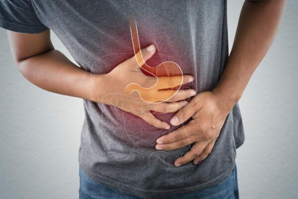 腸敏感 IgG 排除飲食法